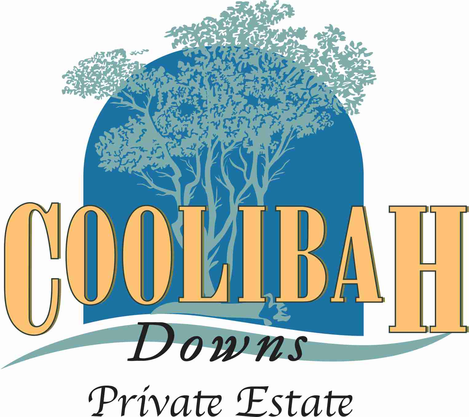 Coolibah Downs Private Estate